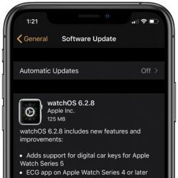 watchOS 6.2.8 software update