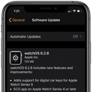 watchOS 6.2.8 software update