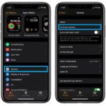 how to install watchOS 7 Public Beta