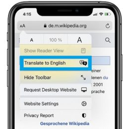 iOS 14 Safari web page Translate feature