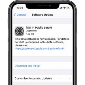 ios 14 Public Beta 5 Software Update
