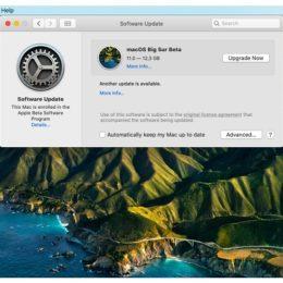 macOS Big Sur Public Beta Software Update
