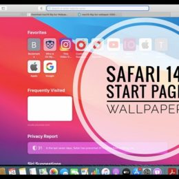 Customized Safari 14 Start Page Wallpaper