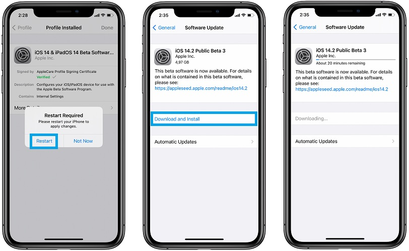 how to download iOS 14.2 beta