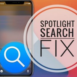 how to fix spotlight search not working
