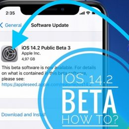 how to update to iOS 14.2 beta