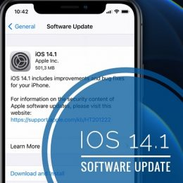 iOS 14. 1 Software Update