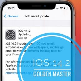 iOS 14.2 Golden Master Beta Update