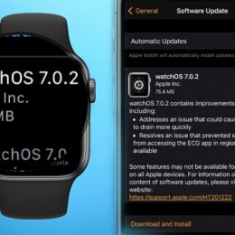 watchOS 7.0.2 software update