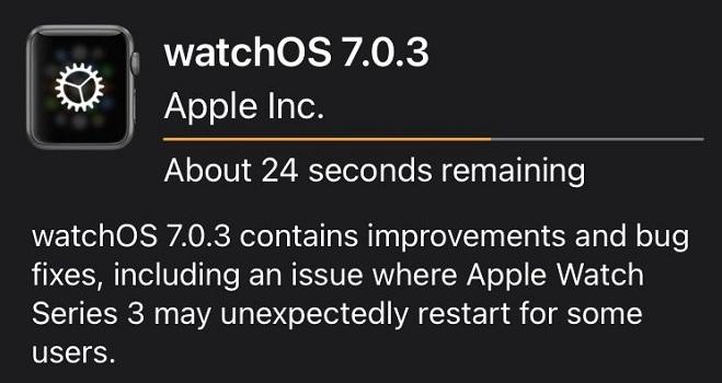 watchOS 7.0.3 update log