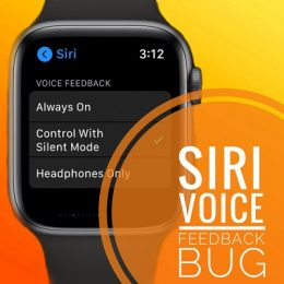 Apple Watch voice feedback bug in watchOS 7.1