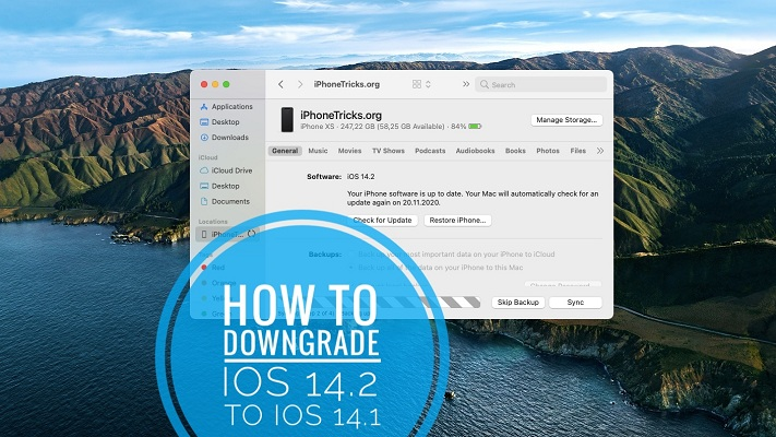 how to downgrade iOS 14.2 to iOS 14.1