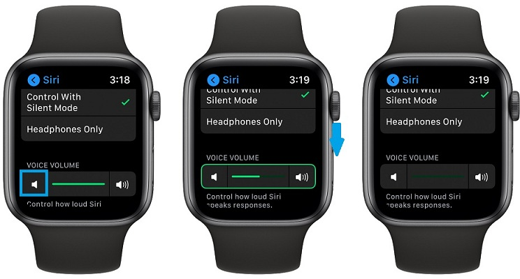how to mute Siri on Apple Watch