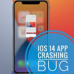 iOS 14.2 App Crashing bug