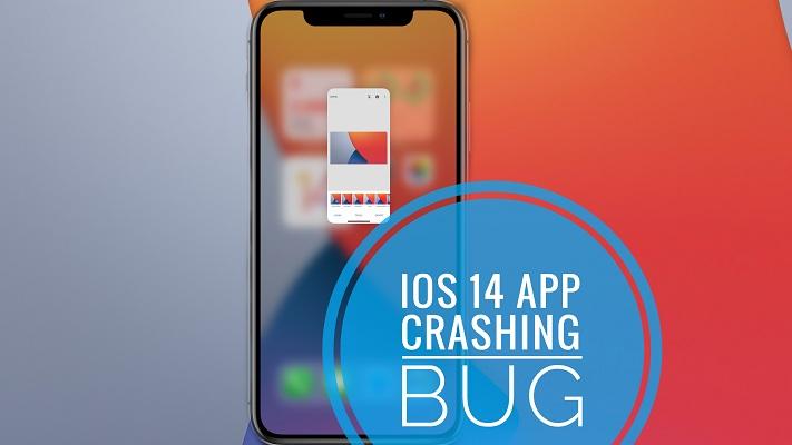 iOS 14.2 App Crashing bug