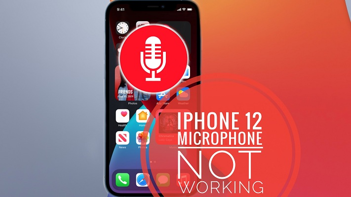 iPhone 12 microphone not working