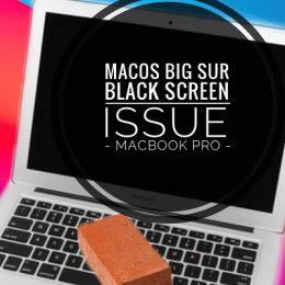 macOS Big Sur Black Screen issue