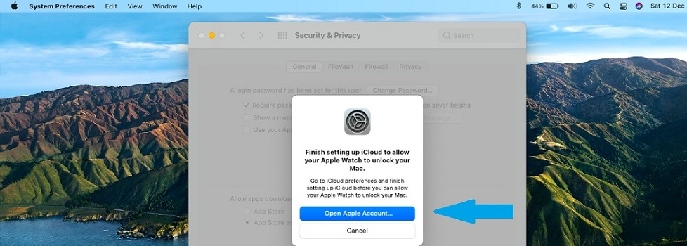 how to enable iCloud Keychain in macOS Big Sur