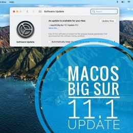 macOS Big Sur 11.1 update