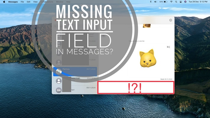 missing text input field in Messages