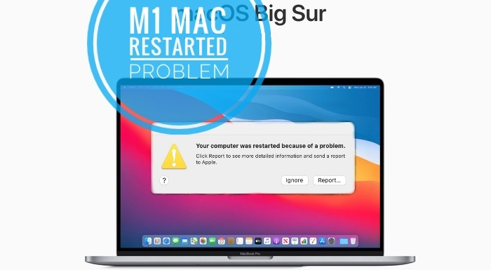 your computer was restarted because of a problem big sur