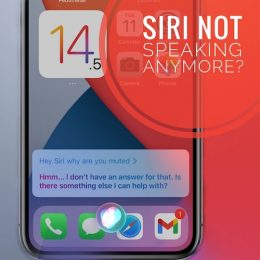 Siri doesn't speak on iPhone