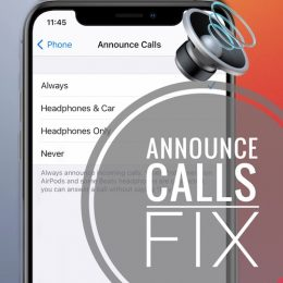 fix announce calls on iPhone