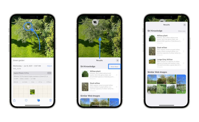 how to Look Up Photos in iOS 15