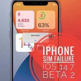 iPhone SIM Failure bug