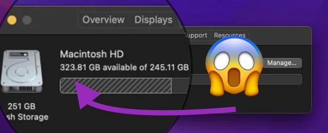 macOS Monterey beta 2 storage bug