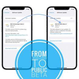 iOS 15 Developer Beta 2 vs iOS 15 Public Beta 2