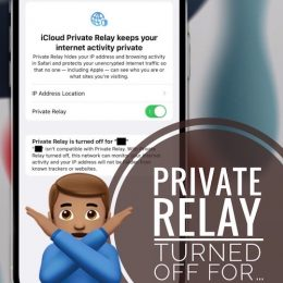 Private Relay is turned off error