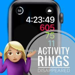 Activity Rings disappeared in watchOS 8