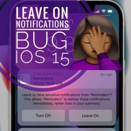 Leave On Time Sensitive Notifications Bug
