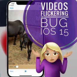 Messenger video flickering in iOS 15