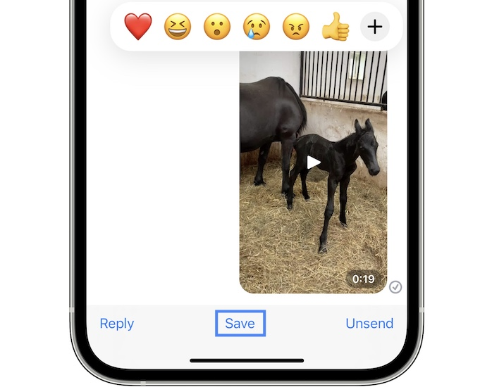 how to fix videos flickering in ios 15