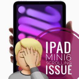 iPad mini scrolling issue